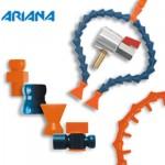 ariana-small